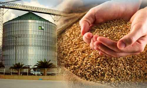 Advantages of using steel silos for grain storage instead of storing the grain in warehouses