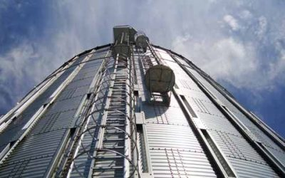 Difference and benefits of a galvanized steel silo and a carbon steel silo with food paint