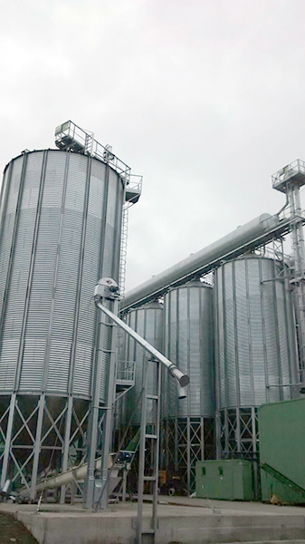 Hazelnut silos Chile