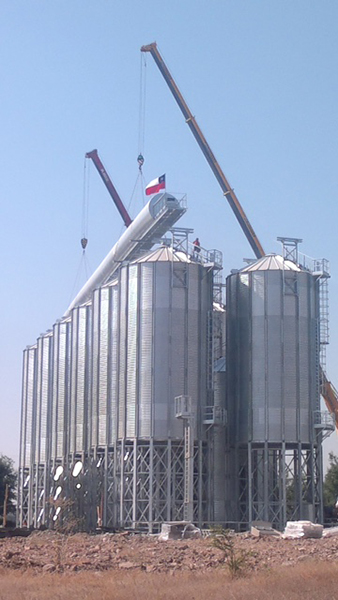 Hopper silos for the storage of hazelnuts