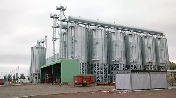 Storage facility for hazelnuts
