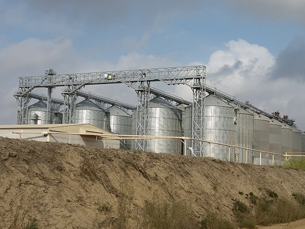 Paddy rice storage plant Spain