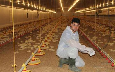 Poultry Farming Success Story: Young poultry farmer continues the family saga