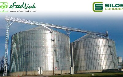 Interview with leading Spanish grain storage developer Silos Córdoba
