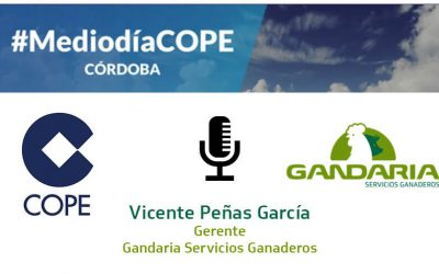 Gandaria on the radio program Agrocope