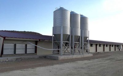Highly energy-efficient poultry production facility in Abejar, Spain