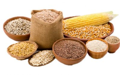 Requirements to store grains safely