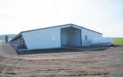 A highly efficient livestock facility with transverse ventilation system
