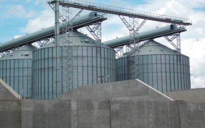 Steel Structures for a Feed Mill in Venezuela