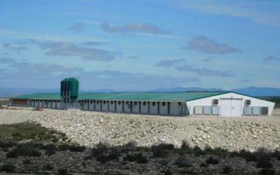Poultry farm equipped with the latest technology is inaugurated in Zaragoza, Spain